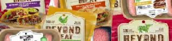 Beyond Meat Idea Proposal (BYND)